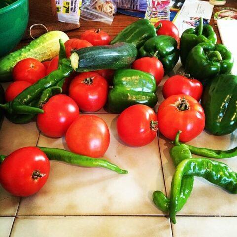 Fresh Homemade Tomato Salsa