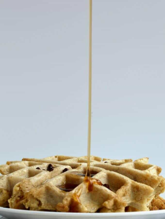 Small Batch Protein Waffles