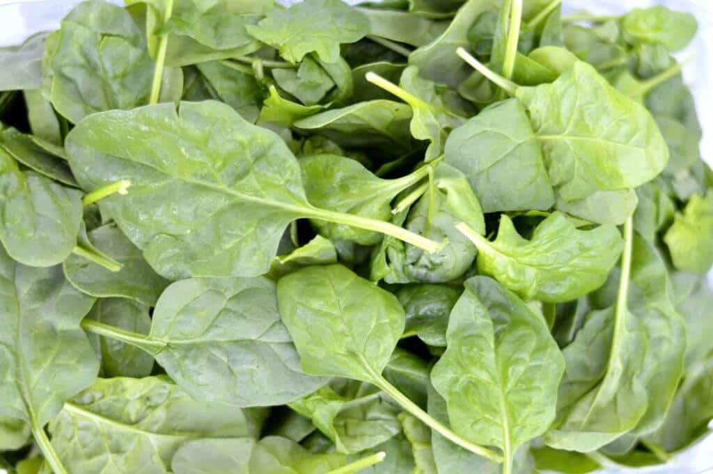 spinach tomato mozzarella pasta salad spinach
